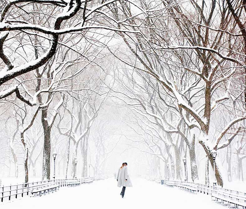 central_park_in_the_snow